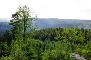 Rajecké údolí