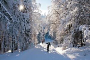 Romantický výlet na běžkách - Lužické hory, šumava, Krkonoše